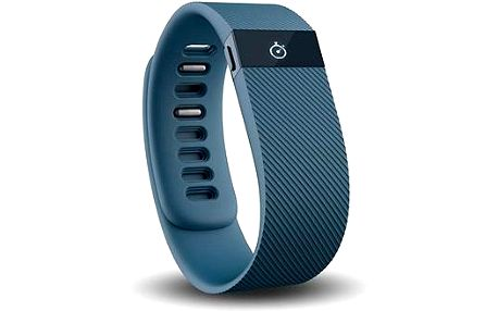 Fitbit Charge Small Slate