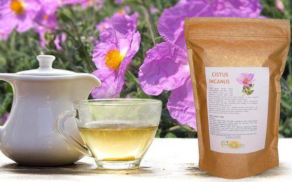 Bylinný čaj Cistus Incanus - detoxikujte a zhubněte snadno