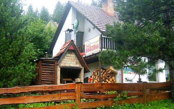 Aktivní dovolená na Horní Bečvě s polopenzí a zvýhodněným vstupným do Valašského muzea v přírodě