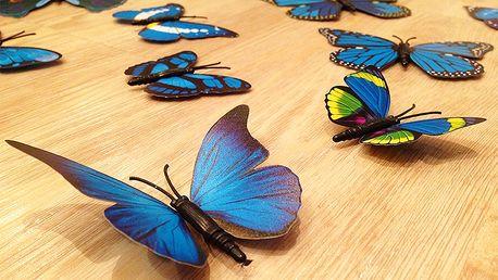 3D dekorace na zeď motýli modrá 12 ks 12 kusů 5 cm až 12 cm