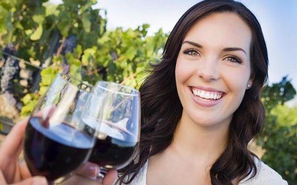Degustace vín a pálenek pro DVA na Jižní Moravě s polopenzí