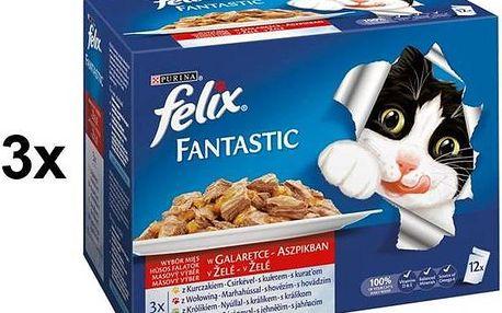 Felix Fantastic masový výběr 3 x (12 x 100g)