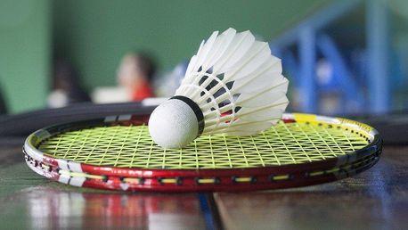 Hodina na badmintonovém kurtu až pro 4 hráče