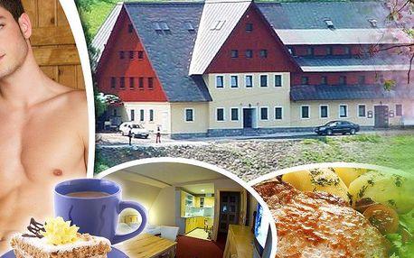 Dovolená v Krkonoších v hotelu Alpina*** s polopenzí, saunou, káva nebo čaj, jablečný závin.