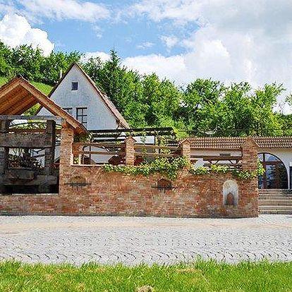 3–6denní vinařský pobyt s polopenzí pro 2 v pensionu Vinného sklepa Krýsa na jižní Moravě