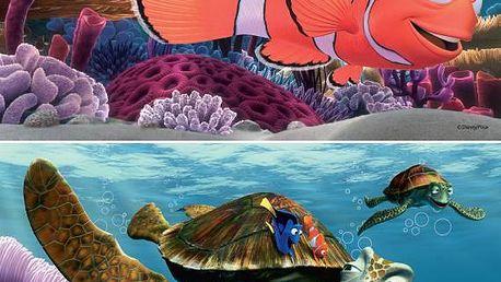 Nemo 2x24p