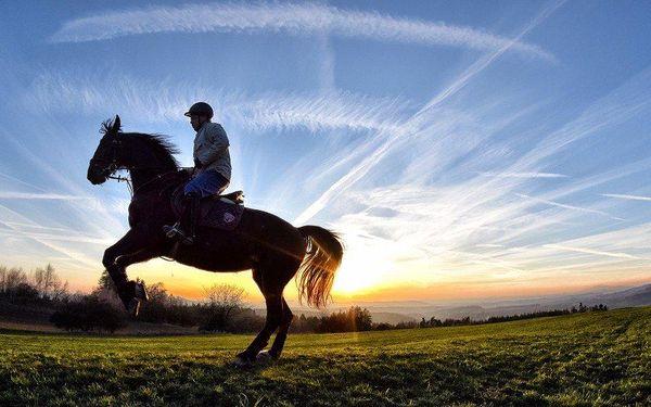 Jízda na koni pro začátečníky i pokročilé
