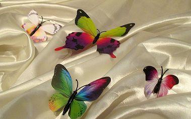 Nalepte.cz 3D dekorace pestří motýli 12 ks 12 kusů 6 cm až 12 cm