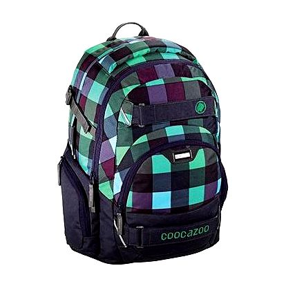 CoocaZoo CarryLarry2 Green Purple District