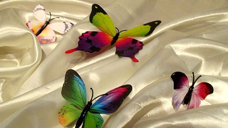 3D dekorace pestří motýli 12 ks 12 kusů 6 cm až 12 cm