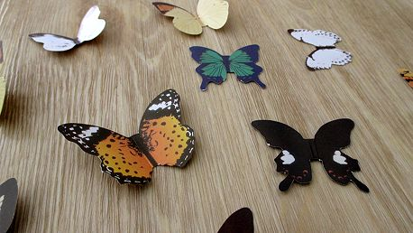 Nalepte.cz 3D papíroví motýlci na zeď 15 ks 4 až 6 cm