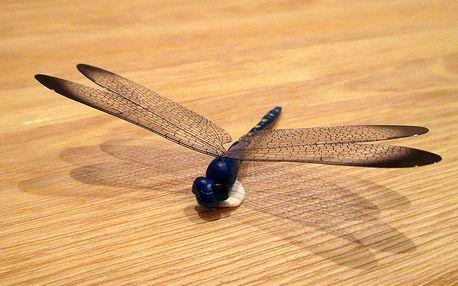 3D vážka modrá dekorace na zeď 8,5 cm