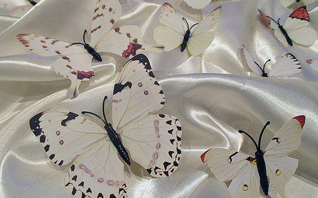 3D dekorace motýli na zeď světlí 12 ks 5 až 12 cm