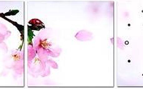 Nástěnné hodiny - plátno beruška