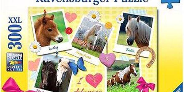 Moje oblíbené koně