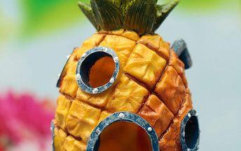 Dekorace do akvária ananas