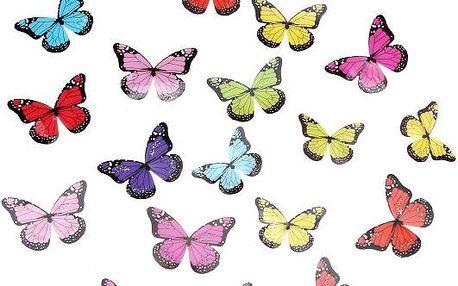 Sada 3D barevných motýlků na zeď