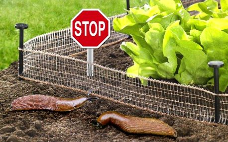 8metrová ohrádka proti slimákům okolo vaší zahrádky pro trvalou ochranu úrody