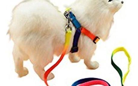 Postroj ve veselých barvách pro menší psy - dodání do 2 dnů