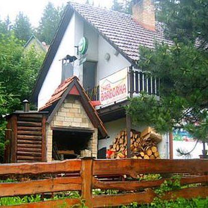 Aktivní léto na Horní Bečvě s polopenzí a zvýhodněným vstupným do Valašského muzea