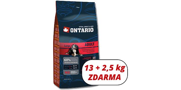 ONTARIO Adult Large Breed 13 kg + 2,5 kg zdarma