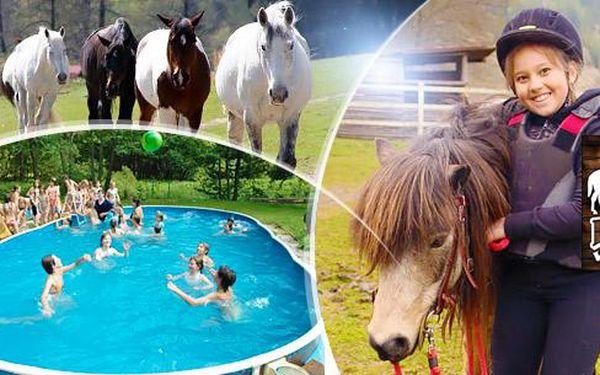 Plzeňsko, víkend na koních pro 1 dítě s plnou penzí a programem či 2hod. vyjíždka pro 1 osobu!