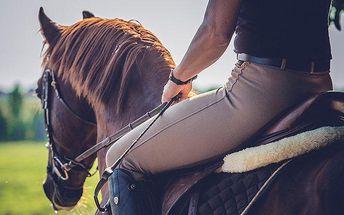 60minutová projížďka na koni pro 1 osobu u Zásmuk