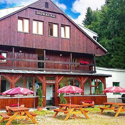 Odpočinek ve Špindlu v Pensionu Horalka