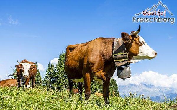 Rakouské Alpy v hotelu + karta Murtalcard