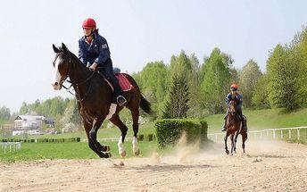 Hodina u koní: Projížďka a individuální výuka