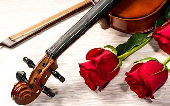 Koncert vážné hudby v Zrcadlové kapli Klementina