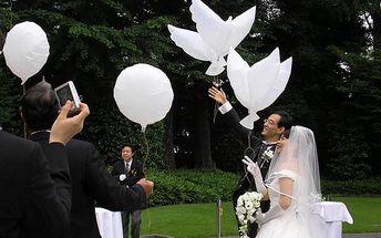 Balonky ve tvaru holubic - dodání do 2 dnů