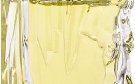 Sisley Eau d´Ikar 50 ml toaletní voda pro muže