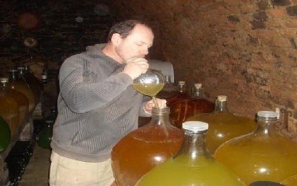 Třídenní vinařský pobyt Horse Farm Lechovice