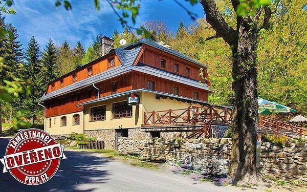 3–6denní pobyt s polopenzí a wellness pro 2 v pensionu Mezihoří v Krušných horách