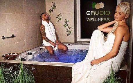 2–4denní pobyt v hotelu Gaudio*** v Bratislavě pro 2 osoby s možností wellness