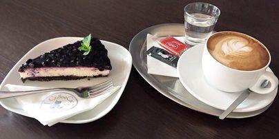 CoffeeCat - kočičí kavárna