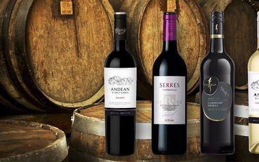 Set 4 vín z Argentiny, Jižní Afriky a Španělska