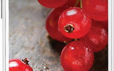 Mobilní telefon LG E455 Optimus L5 II Dual Sim, bílý + 200 Kč za registraci