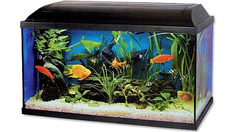 Cat-Gato Akvárium set 100x30x40 cm - II. jakost