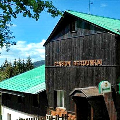 3 až 5denní pobyt pro rodinu s polopenzí v pensionu Berounka v Jizerských horách