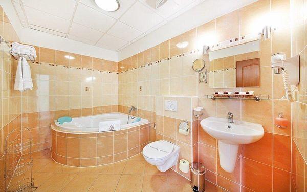 3 dny ve 4* hotelu u zámku Hluboká n. Vltavou s wellness i gastro zážitky2