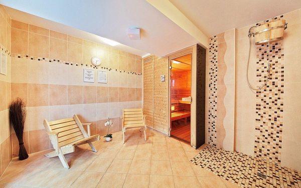 3 dny ve 4* hotelu u zámku Hluboká n. Vltavou s wellness i gastro zážitky3