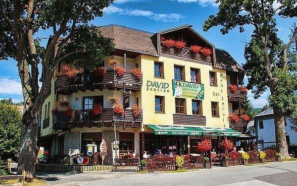 3–6denní wellness pobyt v hotelu David*** v Krkonoších pro 2 osoby