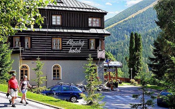 3denní pobyt pro 2 s polopenzí a wellness v Alpském hotelu ve Špindlerově Mlýně
