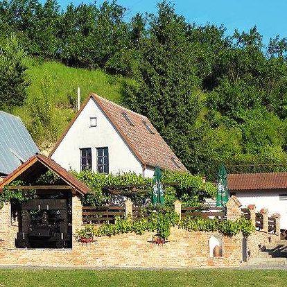 3–6denní pobyt s vínem, polopenzí pro 2 v pensionu Vinného sklepa Krýsa na jižní Moravě