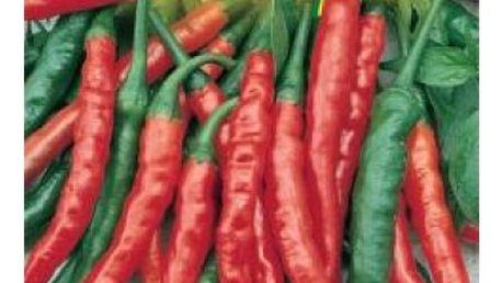 Paprika pálivá - 40 semen - dodání do 2 dnů