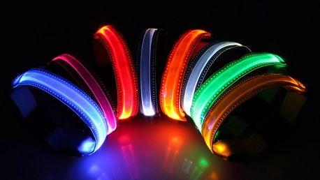 Svítící LED obojek - 4 velikosti, 8 barev