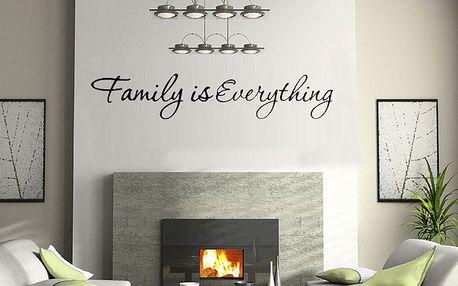 Samolepka na zeď Family is Everything