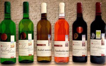 Sady exkluzivních moravských vín